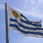 Negocios rentables en Uruguay