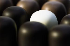 tu propia línea de chocolates artesanales II