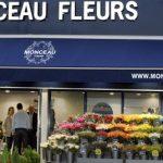 Franquicia Monceau Fleurs – Tienda de flores y plantas al por menor