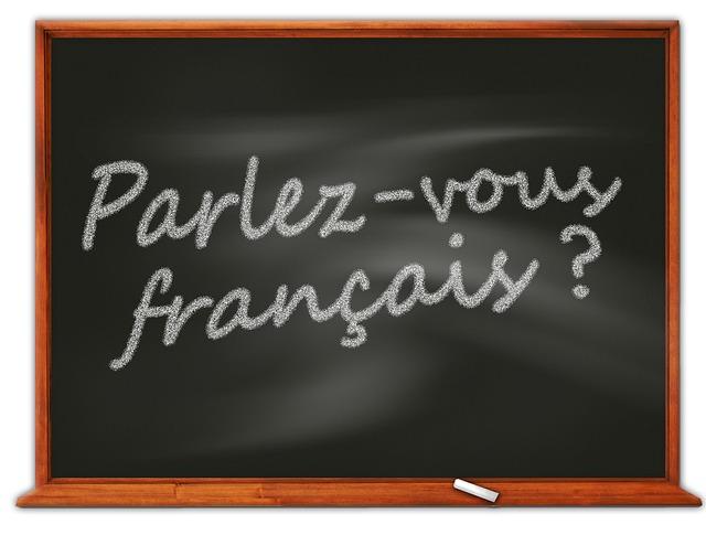 Instituto de Francés