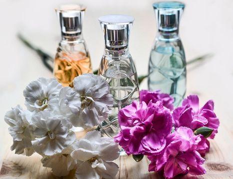 equivalenza perfume