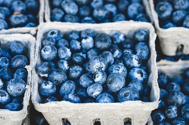 Alimentos orgánicos como negocio