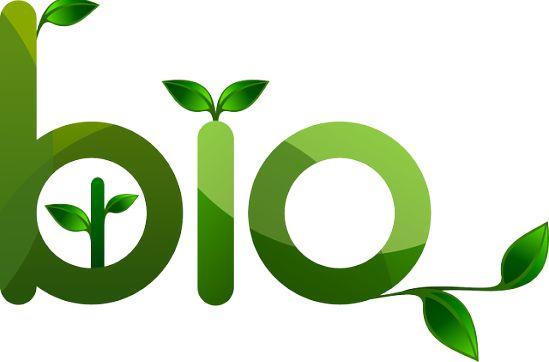 Productos y elementos ecologicos