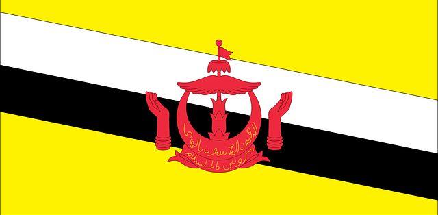 Negocios y mercados rentables para montar en Brunéi