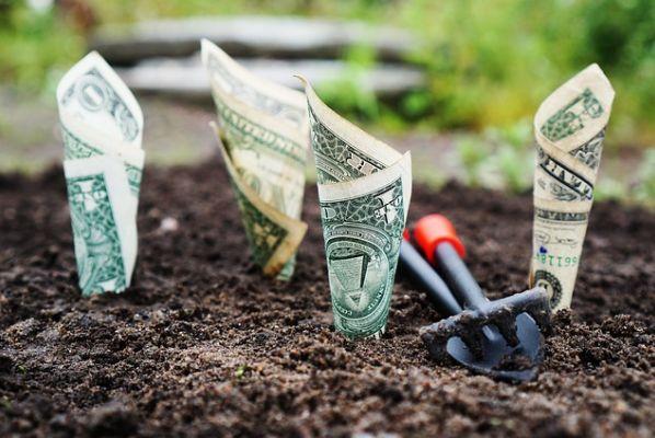 Consejos para pequeños inversionistas