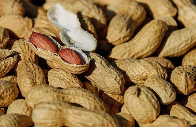 negocio de venta de cereales y frutos secos