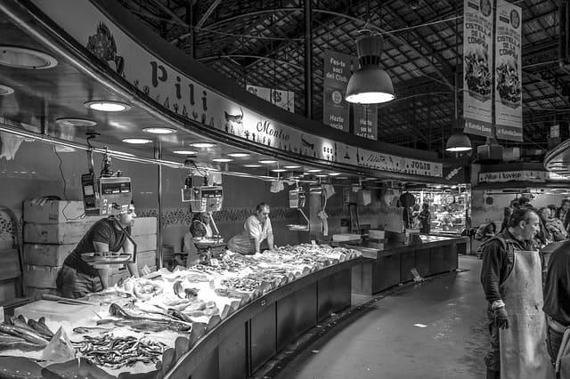 tienda de venta de pescados permisos