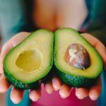 Abrir un Avocado Bar – Restaurante todo con Aguacate