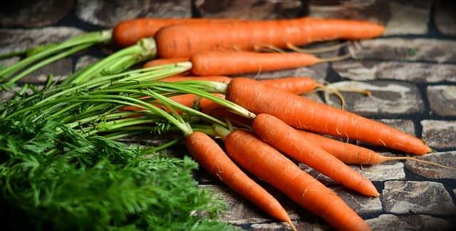 negocio de Compra y Venta de Alimentos